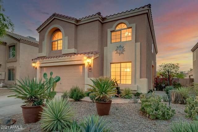 6790 E Quiet Retreat, Florence, AZ 85132 (MLS #6244528) :: Executive Realty Advisors