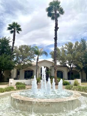 9215 N Invergordon Road, Paradise Valley, AZ 85253 (MLS #6244531) :: Dave Fernandez Team   HomeSmart