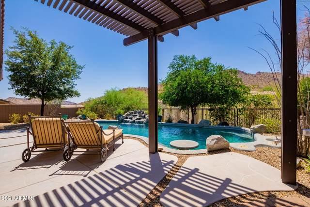 12356 N 145TH Way, Scottsdale, AZ 85259 (MLS #6244606) :: Yost Realty Group at RE/MAX Casa Grande