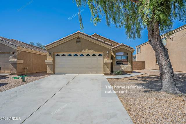 44030 W Magnolia Road, Maricopa, AZ 85138 (MLS #6244624) :: Selling AZ Homes Team