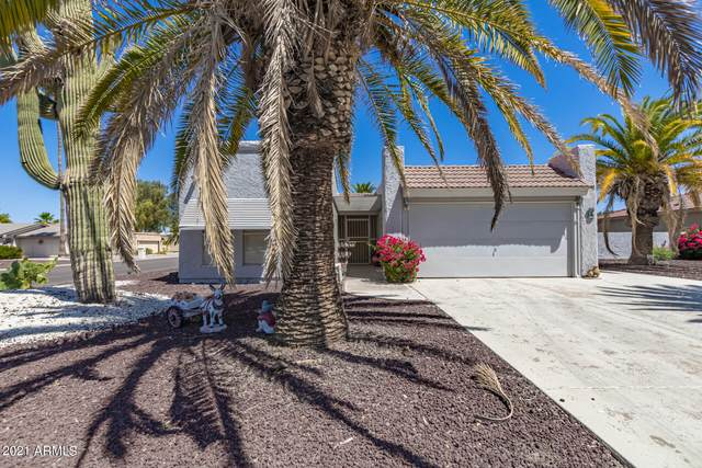 9534 E Pinto Place, Sun Lakes, AZ 85248 (MLS #6244658) :: Executive Realty Advisors