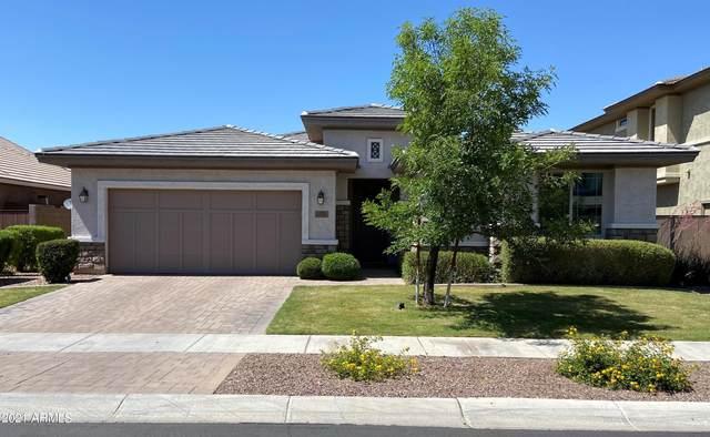 7256 E Portobello Avenue, Mesa, AZ 85212 (MLS #6244712) :: Yost Realty Group at RE/MAX Casa Grande