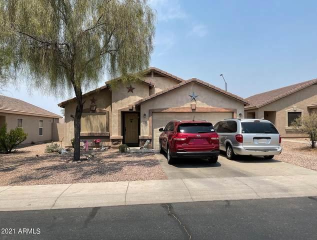 1308 S 226TH Drive, Buckeye, AZ 85326 (MLS #6244734) :: Yost Realty Group at RE/MAX Casa Grande