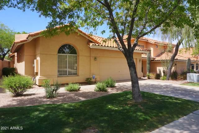 6643 E Sugarloaf Street, Mesa, AZ 85215 (MLS #6244750) :: Yost Realty Group at RE/MAX Casa Grande