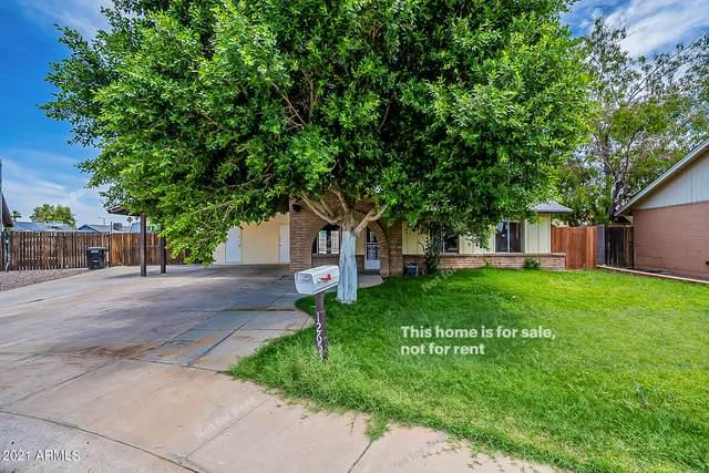 12653 N 42ND Drive, Phoenix, AZ 85029 (MLS #6244762) :: Yost Realty Group at RE/MAX Casa Grande