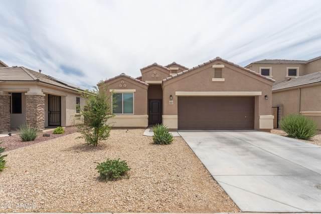 17177 N Rosemont Street, Maricopa, AZ 85138 (MLS #6244767) :: Yost Realty Group at RE/MAX Casa Grande