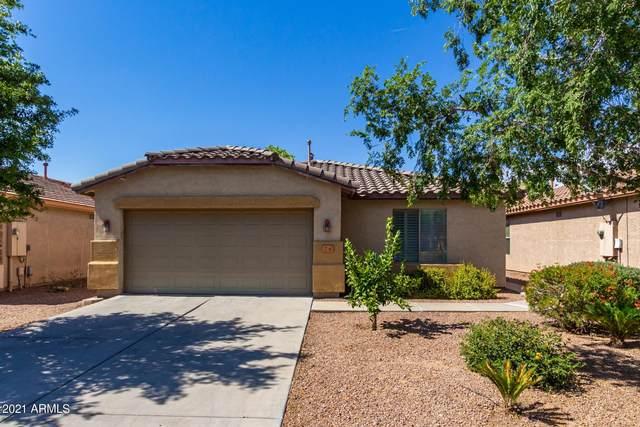 76 W Angus Road, San Tan Valley, AZ 85143 (MLS #6244794) :: Yost Realty Group at RE/MAX Casa Grande