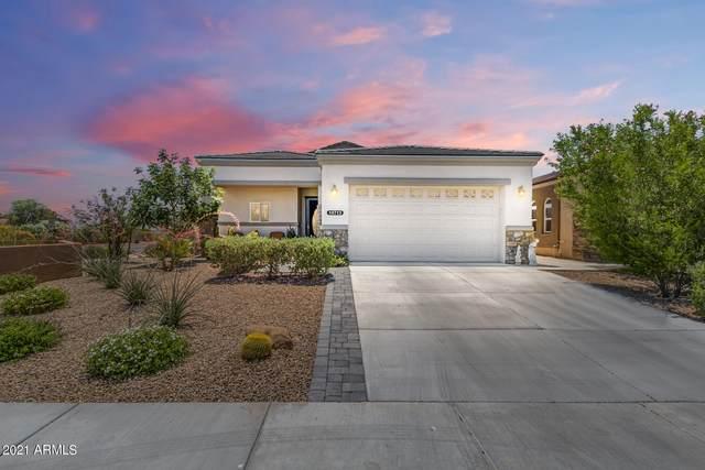 10713 W Utopia Road, Sun City, AZ 85373 (MLS #6244834) :: Power Realty Group Model Home Center