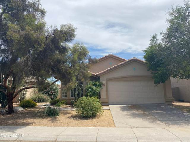 4217 E Creosote Drive, Cave Creek, AZ 85331 (MLS #6244835) :: Yost Realty Group at RE/MAX Casa Grande