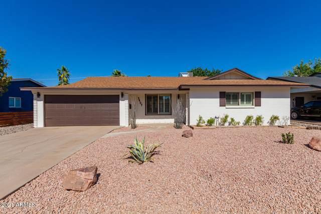 3407 N 85TH Street, Scottsdale, AZ 85251 (MLS #6244883) :: Keller Williams Realty Phoenix