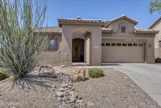 10790 E Salt Bush Drive, Scottsdale, AZ 85255 (MLS #6244884) :: Walters Realty Group