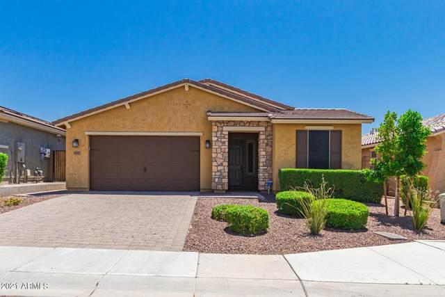 30817 N 25TH Drive, Phoenix, AZ 85085 (MLS #6244900) :: Yost Realty Group at RE/MAX Casa Grande