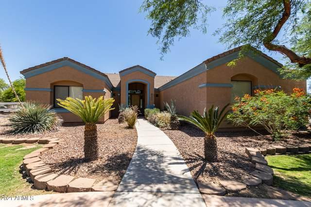 20987 E Pummelos Road, Queen Creek, AZ 85142 (MLS #6244902) :: Yost Realty Group at RE/MAX Casa Grande