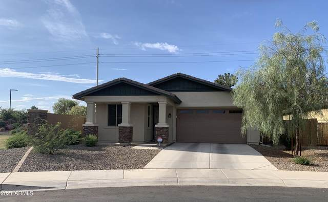 8552 W Peppertree Lane, Glendale, AZ 85305 (MLS #6244952) :: Yost Realty Group at RE/MAX Casa Grande
