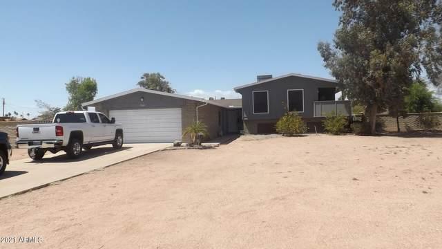 7342 W Bluefield Avenue, Glendale, AZ 85308 (MLS #6244976) :: Yost Realty Group at RE/MAX Casa Grande