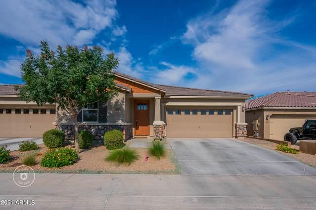 5065 N 145TH Drive, Litchfield Park, AZ 85340 (MLS #6245001) :: ASAP Realty