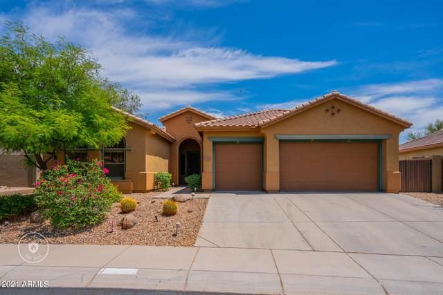 2433 W Kit Carson Court, Phoenix, AZ 85086 (MLS #6245019) :: Executive Realty Advisors