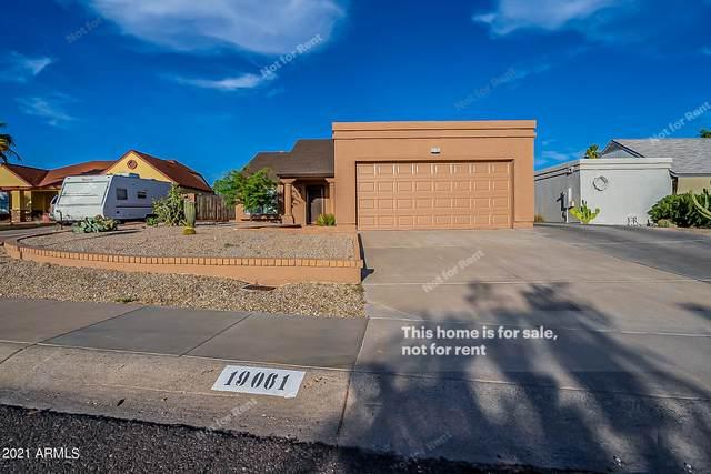 19061 N 13TH Street, Phoenix, AZ 85024 (MLS #6245090) :: Yost Realty Group at RE/MAX Casa Grande