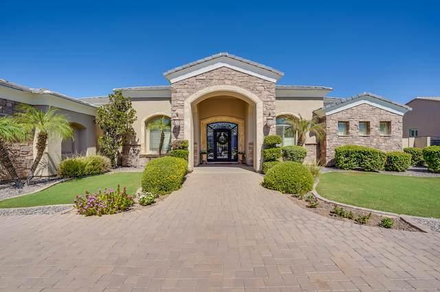 3160 E Waterman Court, Gilbert, AZ 85297 (MLS #6245108) :: Yost Realty Group at RE/MAX Casa Grande
