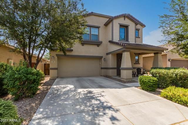 3901 S Vineyard Avenue, Gilbert, AZ 85297 (MLS #6245112) :: Yost Realty Group at RE/MAX Casa Grande