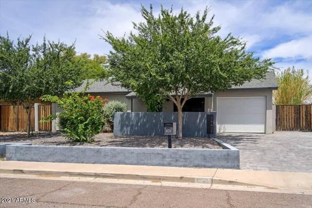 14428 N 33RD Place, Phoenix, AZ 85032 (MLS #6245156) :: The Carin Nguyen Team