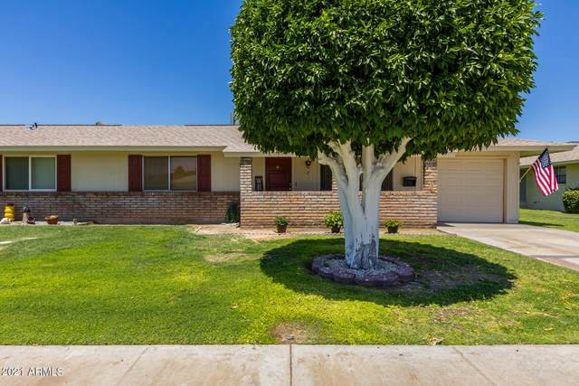 10515 W Saratoga Circle, Sun City, AZ 85351 (MLS #6245242) :: Service First Realty