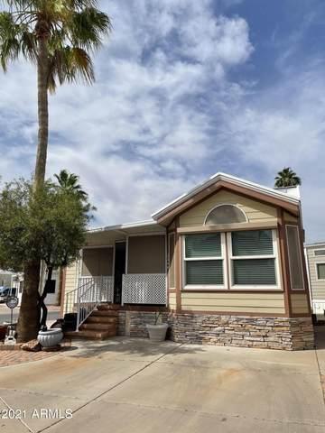 2366 S Pomo Avenue, Apache Junction, AZ 85119 (MLS #6245250) :: Synergy Real Estate Partners