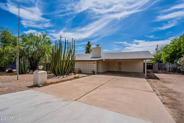 684 S Palo Verde Drive, Apache Junction, AZ 85120 (MLS #6245254) :: Yost Realty Group at RE/MAX Casa Grande