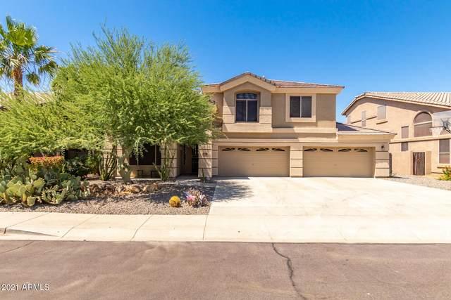6944 W Antelope Drive, Peoria, AZ 85383 (MLS #6245386) :: Yost Realty Group at RE/MAX Casa Grande