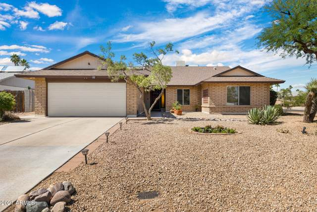 5160 E Carolina Drive, Scottsdale, AZ 85254 (MLS #6245390) :: Yost Realty Group at RE/MAX Casa Grande