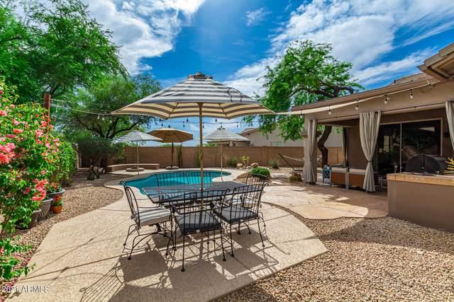 10555 E Salt Bush Drive, Scottsdale, AZ 85255 (MLS #6245401) :: Zolin Group