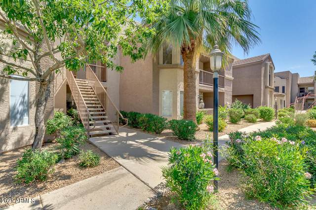 17017 N 12TH Street #2087, Phoenix, AZ 85022 (MLS #6245427) :: Arizona 1 Real Estate Team