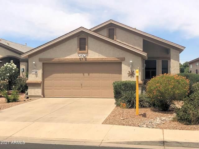 9744 N 97TH Lane, Peoria, AZ 85345 (MLS #6245430) :: Yost Realty Group at RE/MAX Casa Grande