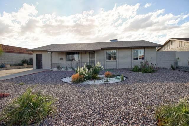 3002 N 64TH Drive, Phoenix, AZ 85033 (MLS #6245431) :: Yost Realty Group at RE/MAX Casa Grande