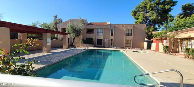 3131 W Cochise Drive #126, Phoenix, AZ 85051 (MLS #6245445) :: CANAM Realty Group
