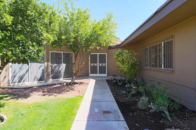 10802 W Thunderbird Boulevard, Sun City, AZ 85351 (MLS #6245449) :: Synergy Real Estate Partners