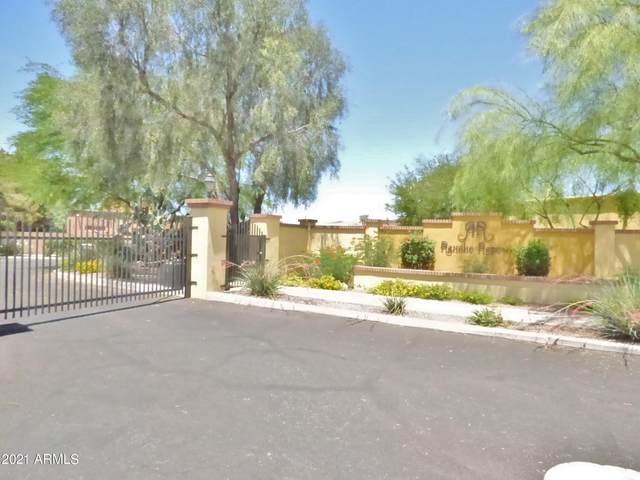 3727 N Placita Vergel, Tucson, AZ 85719 (MLS #6245477) :: Yost Realty Group at RE/MAX Casa Grande