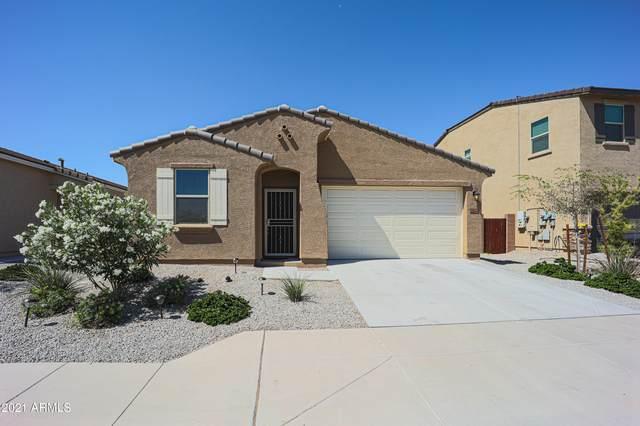 23649 W Watkins Street, Buckeye, AZ 85326 (MLS #6245510) :: Klaus Team Real Estate Solutions