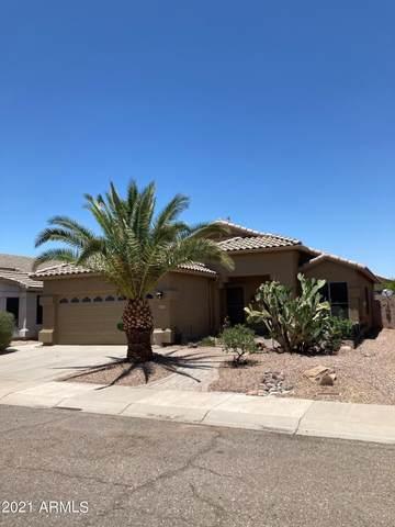 4708 E Briarwood Terrace E, Phoenix, AZ 85048 (MLS #6245526) :: Yost Realty Group at RE/MAX Casa Grande