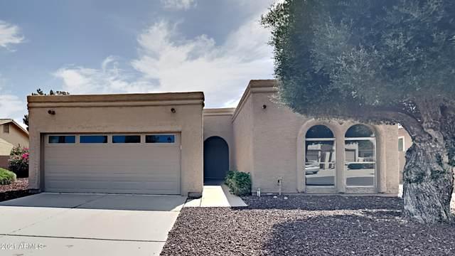 26437 S Sedona Drive, Sun Lakes, AZ 85248 (MLS #6245579) :: Yost Realty Group at RE/MAX Casa Grande