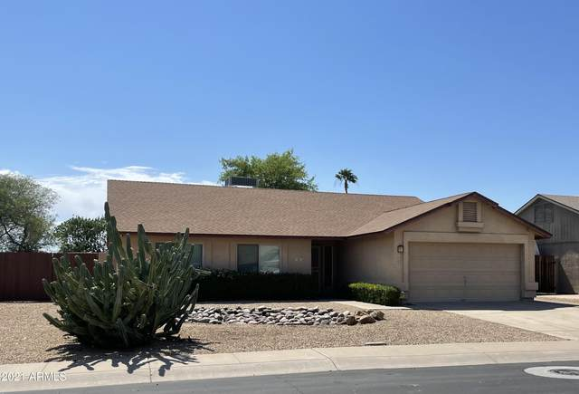 18856 N 40TH Place, Phoenix, AZ 85050 (MLS #6245595) :: Power Realty Group Model Home Center