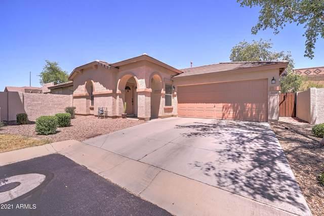2049 S Luther, Mesa, AZ 85209 (MLS #6245598) :: Yost Realty Group at RE/MAX Casa Grande