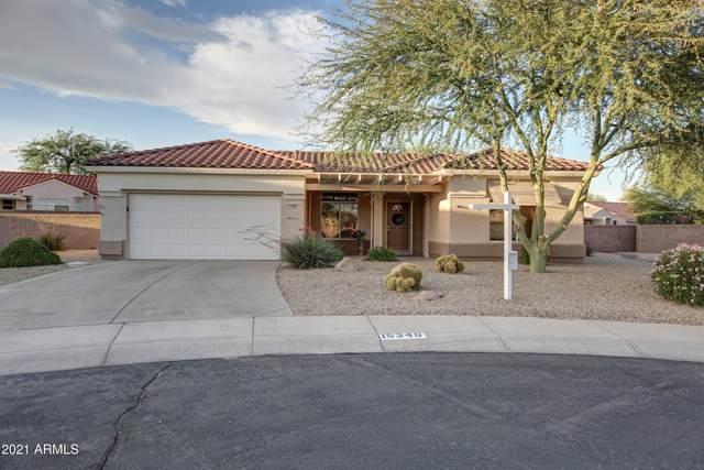 15340 W Via Montoya, Sun City West, AZ 85375 (MLS #6245617) :: Yost Realty Group at RE/MAX Casa Grande