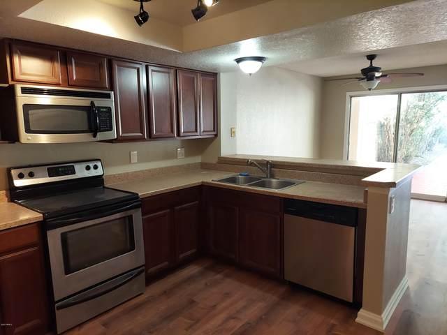 1502 N Central Drive, Chandler, AZ 85224 (MLS #6245654) :: Yost Realty Group at RE/MAX Casa Grande