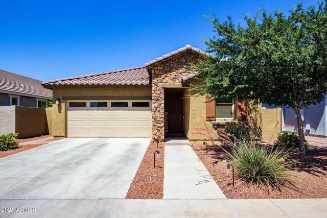 3516 N Creston, Mesa, AZ 85213 (MLS #6245755) :: Yost Realty Group at RE/MAX Casa Grande