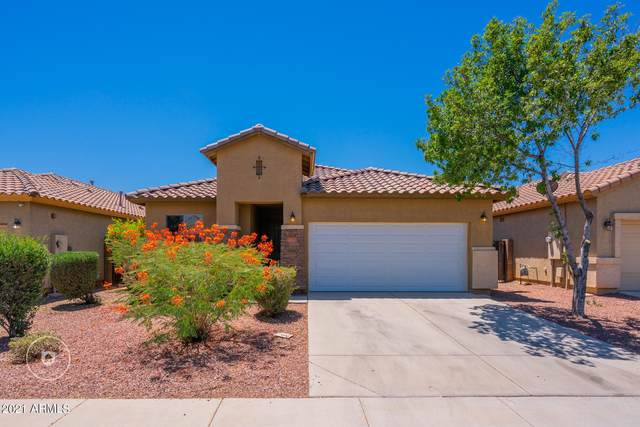 17711 W Tasha Drive, Surprise, AZ 85388 (MLS #6245778) :: Yost Realty Group at RE/MAX Casa Grande