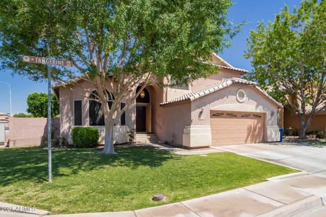 103 N Tangerine Drive, Chandler, AZ 85226 (MLS #6245802) :: Yost Realty Group at RE/MAX Casa Grande