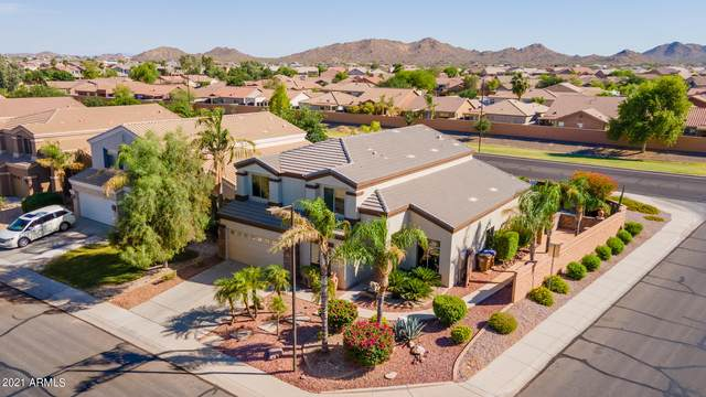 3597 W Mineral Butte Drive, Queen Creek, AZ 85142 (MLS #6245840) :: Yost Realty Group at RE/MAX Casa Grande