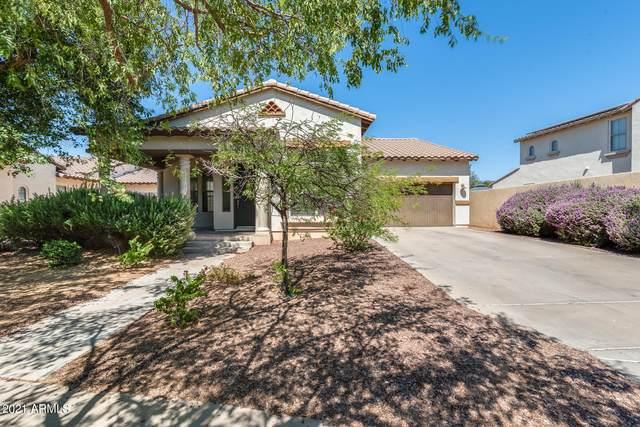3842 N Springfield Street, Buckeye, AZ 85396 (MLS #6245854) :: Yost Realty Group at RE/MAX Casa Grande