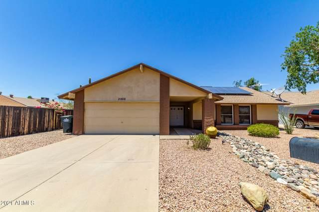 20808 N 14TH Lane, Phoenix, AZ 85027 (MLS #6245882) :: Yost Realty Group at RE/MAX Casa Grande